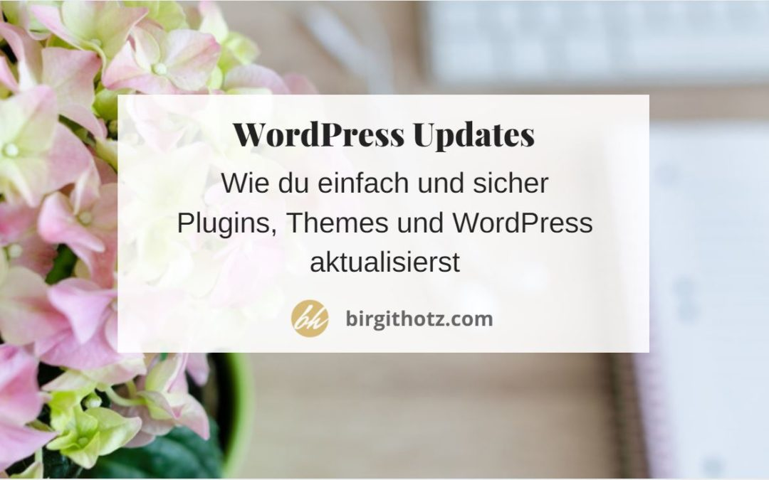 WordPress updaten, Plugins und Themes – einfache sichere Anleitung